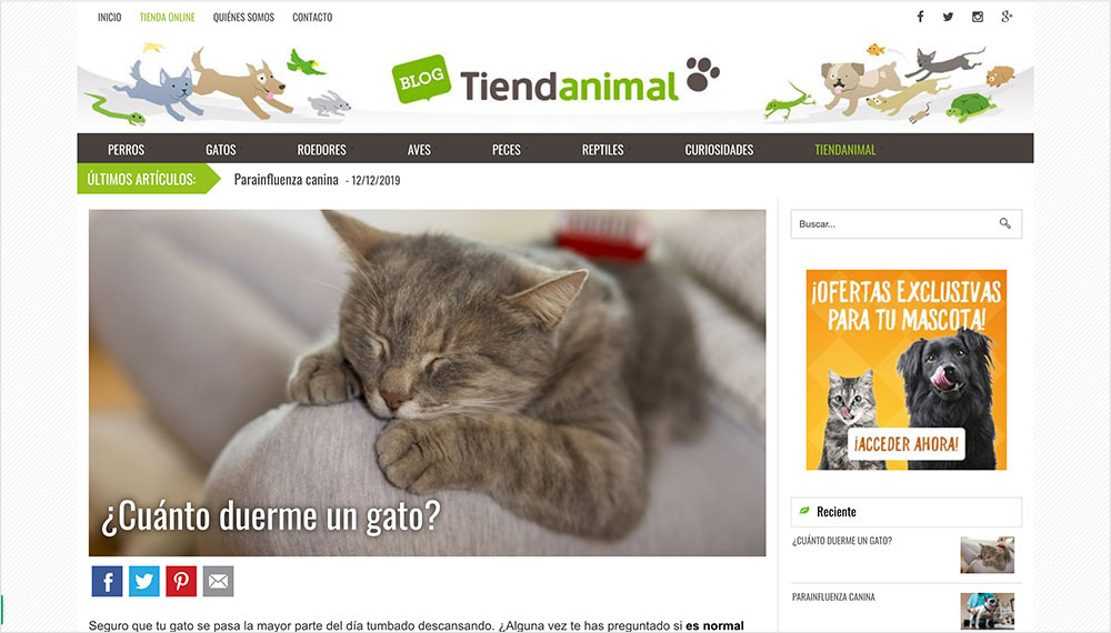 blog tienda animal